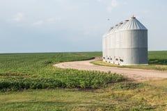 Getreidespeicherbehälter, die auf einem grünen Gebiet sitzen Stockfotografie