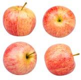 Getrennte Äpfel Lizenzfreie Stockfotos