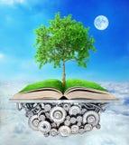 getrennte alte Bücher Baum des Wissens wächst Lizenzfreie Stockfotos