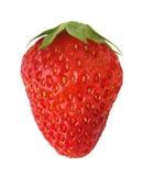 Getrennte Erdbeere lizenzfreies stockfoto