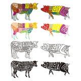Getrennte farbige Kuh und Schwein Stockbilder