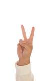 Getrennte Hand auf einem weißen Hintergrund stockfotografie