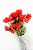 Getrennte Mohnblumeblume Frühling mit Blumen Beschneidungspfad eingeschlossen Lizenzfreie Stockbilder
