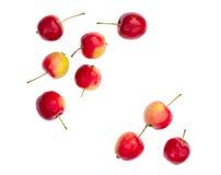 Getrennte rote Äpfel Lizenzfreie Stockfotografie