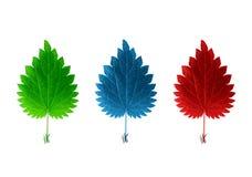 Getrennte rote blaue u. grüne Blätter Stockfotografie