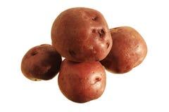 Getrennte rote Kartoffeln Lizenzfreie Stockbilder