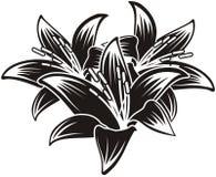 Getrennte vektortropische Blumen Lizenzfreie Stockfotos