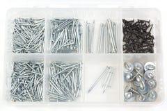 Getrennter Kasten mit verschiedenen metallischen Nägeln auf Weiß Lizenzfreies Stockbild
