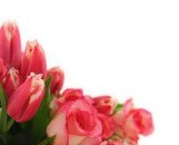 Getrennter rosafarbener Blumenstrauß Stockbild