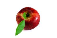 Getrennter roter Apfel Stockbild