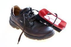 Getrennter Schuh mit Pinsel Stockfotografie