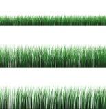 Getrenntes Gras lizenzfreie abbildung
