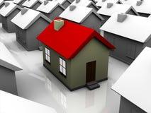 Getrenntes Haus unter vielen Häusern lizenzfreie abbildung