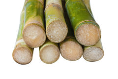 Getrenntes Zuckerrohr lizenzfreies stockbild