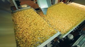 Getretener Förderer verlegt Chips stock footage