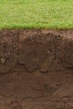 Getrimmtes Gras über herausgestelltem Boden Lizenzfreie Stockfotografie