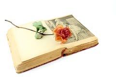 Getrocknet stieg auf ein altes Buch Stockfotografie