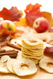 Getrocknete Äpfel und Herbstblätter lizenzfreie stockbilder