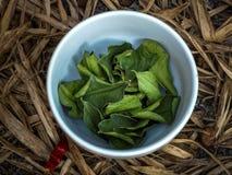 Getrocknete Blätter des Kaffir Kalk Stockbild