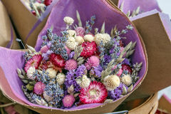 Getrocknete Blumen Lizenzfreie Stockfotografie