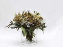 Getrocknete Blumen Lizenzfreie Stockbilder