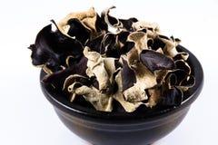 Getrocknete chinesische schwarze Pilze, Auricularia polytricha, nennen auch Lizenzfreie Stockbilder
