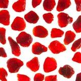 Getrocknete Erdbeere Lizenzfreie Stockfotos