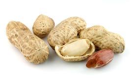Getrocknete Erdnüsse stockfotos