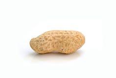 Getrocknete Erdnüsse auf weißem Hintergrund Lizenzfreies Stockbild
