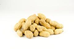 Getrocknete Erdnüsse herein auf Weiß Lizenzfreie Stockbilder