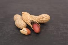 Getrocknete Erdnussnahaufnahme auf einem schwarzen Hintergrund lizenzfreie stockfotos