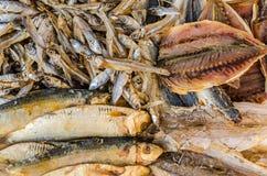 Getrocknete Fisch-gesalzene Fische Stockfotografie