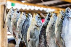 Getrocknete Fische Stockfoto