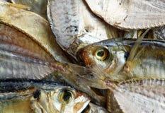 Getrocknete gesalzene Fische Stockfotografie