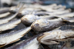 Getrocknete gesalzene Fische am Markt stockbilder