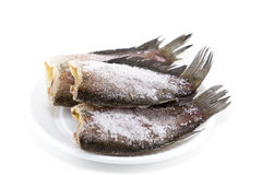 Getrocknete Gourami-Fische Lizenzfreies Stockfoto