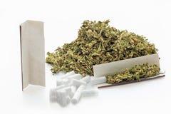 Getrocknete Hanfblätter und Rollenpapier und -filter der Zigarette Stockfoto