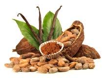 Getrocknete Kakao-Frucht und Bohnen mit Vanille lizenzfreie stockbilder