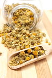 Getrocknete Kamille im Glasgefäß und auf hölzernem Löffel Lizenzfreie Stockfotos