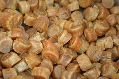 Getrocknete Kamm-Muscheln stockbilder