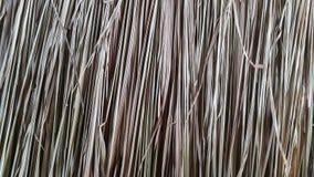 Getrocknete Kokosnuss verlässt Beschaffenheit Stockbilder