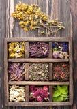 Getrocknete Kräuter und Blumen Lizenzfreies Stockfoto