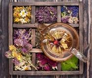 Getrocknete Kräuter und Blumen und Kräutertee Stockbild