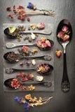 Getrocknete Kräuter für Kräutertee und verschiedenen Tee Stockbilder
