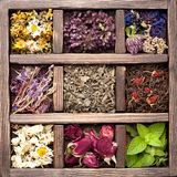 Getrocknete Kräuter und Blumen Stockbilder
