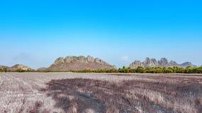 Getrocknete Landwirtschaftsreisweidelandschaft mit Felsenberg und hellem blauem Himmel in Kamphaengphet Nord-Thailand Lizenzfreie Stockbilder