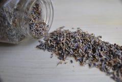 Getrocknete Lavendelzusammensetzung auf Weiß Lizenzfreie Stockfotografie
