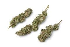 Getrocknete Marihuanaknospen mit sichtbarem THC Stockfotos