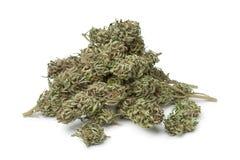 Getrocknete Marihuanaknospen mit sichtbarem THC Lizenzfreies Stockbild