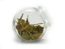 Getrocknete Mistelzweigblätter in einem Glas Stockfotos